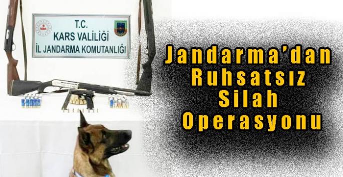 Jandarma'dan Ruhsatsız Silah Operasyonu