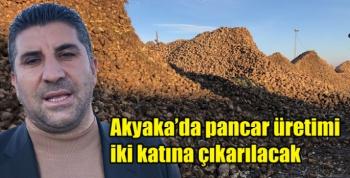 Akyaka'da pancar üretimi iki katına çıkarılacak