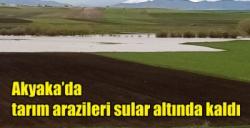 Akyaka'da tarım arazileri sular altında kaldı