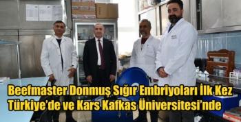 Beefmaster Donmuş Sığır Embriyoları İlk Kez Türkiye'de ve Kars Kafkas Üniversitesi'nde
