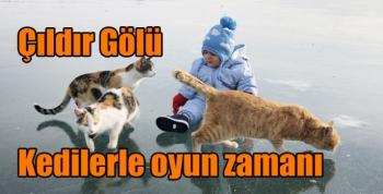 Çıldır Gölünün kedileriyle oyun zamanı