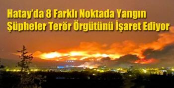 Hatay'da 8 Farklı Noktada Yangın Şüpheler Terör Örgütünü İşaret Ediyor