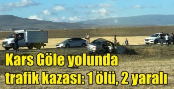 Kars Göle yolunda trafik kazası: 1 ölü, 2 yaralı