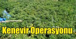 Kars'ta Kenevir Operasyonu