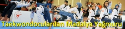 Taekwondoculardan Madalya Yağmuru