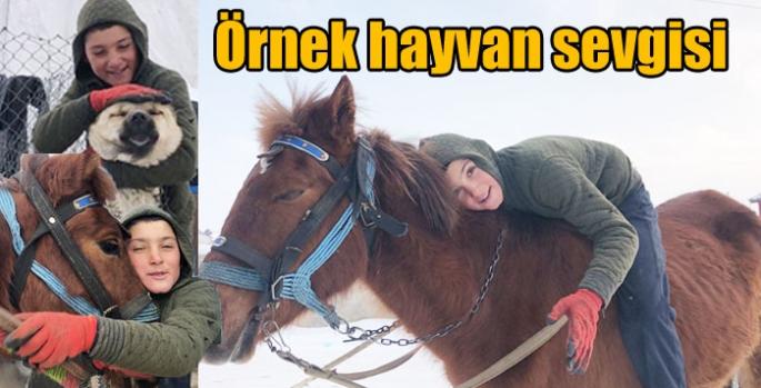Kars'ta örnek hayvan sevgisi – Cumhuriyet Köyü (Kamasor)