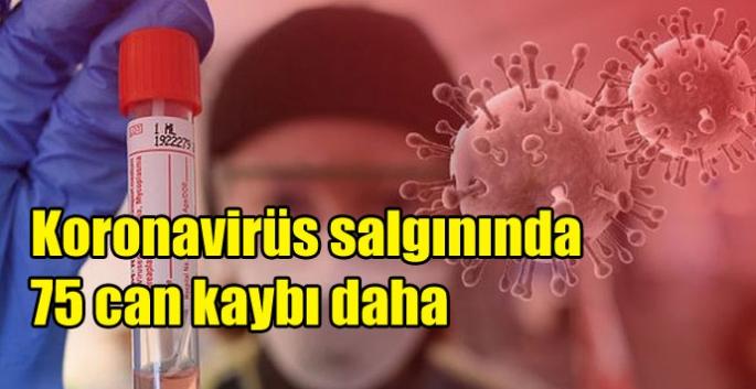 Koronavirüs salgınında 75 can kaybı daha